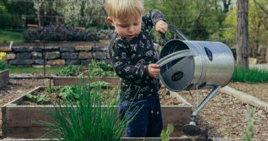 Jak zabavit děti na zahradě